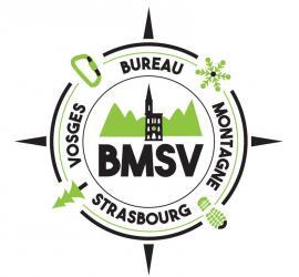 Logo bmsv